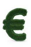 Signe d'euro d'herbe verte Photographie stock libre de droits