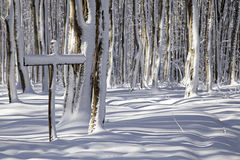 Signe d'hiver Photos libres de droits