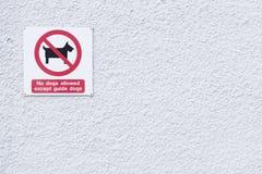 Signe de chiens de guide seul pour les abat-jour photographie stock