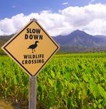 Signe de croisement de faune Photos libres de droits