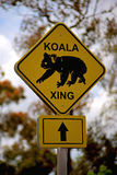 Signe de croisement de koala Photo stock