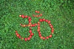 Signe de ` de l'OM de ` de fraise Image stock