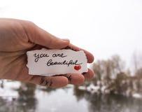 Signe de l'amour dans la main de la fille sur un fond de la rivière Photos libres de droits