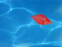 Signe de l'automne Photos libres de droits