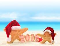 Signe de la nouvelle année 2016 avec des étoiles de mer dans le chapeau de Santa Claus Photos libres de droits