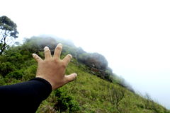 Signe de main d'homme Photo libre de droits