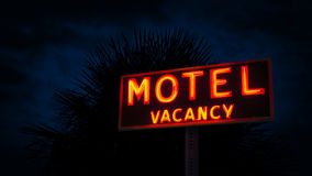 Signe de motel par la plante tropicale la nuit clips vidéos