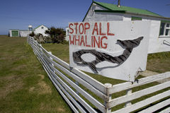 Signe de pêche à la baleine, Image stock