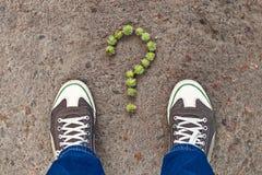 Signe de question composé de petites châtaignes vertes Image stock