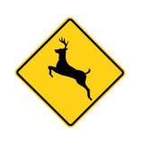 signe de route de cerfs communs de croisement Image libre de droits