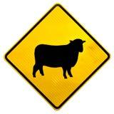 Signe de route de croisement de moutons d'attention Images stock