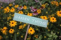 Signe de thym de jardin Photographie stock