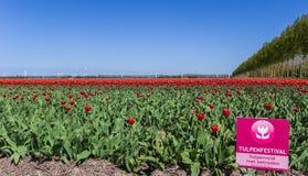 Signe de touristes devant un champ de tulipe dans Noordoostpolder photos stock