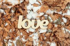 Signe en bois d'amour extérieur au sol avec les feuilles et la neige de jaune Photographie stock libre de droits