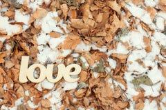 Signe en bois d'amour extérieur au sol avec les feuilles et la neige de jaune Photos stock