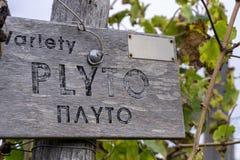 Signe en bois de vignoble de variété de Plyto photographie stock libre de droits