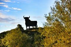Signe espagnol de taureau Photographie stock libre de droits