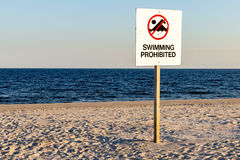 Signe interdit de natation image libre de droits