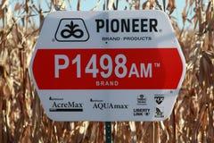 Signe pionnier de maïs de graine Photographie stock