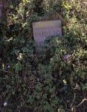 Signe public de pierre de sentier piéton en partie caché par la verdure images stock