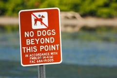 Signe rouge aucun chiens au delà de ce point Échouez près de l'eau de mer, la Floride, Etats-Unis Connexion d'avertissement la pl photos libres de droits