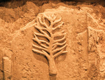 Signes d'arbre avec des branches sur le mur artificiel d'Egypte Photographie stock