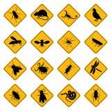 Signes de rongeur et de parasite Photo stock