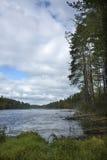 Signes tôt de la chute à l'étang casse-cou dans l'union, le Connecticut photographie stock libre de droits