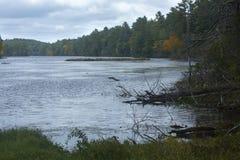 Signes tôt de la chute à l'étang casse-cou dans l'union, le Connecticut image libre de droits