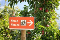 Signez avec augmenter le symbole et les pommiers dans Merano, Tyrol du sud Images libres de droits