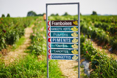 Signez avec des indicateurs à l'élevage différent de légumes et de fruits à la ferme Photos stock