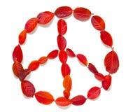 Signez la paix des feuilles d'automne sur le fond blanc Photos libres de droits