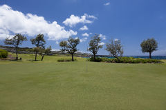Signiture green on oceanside maui course,. Condos in background Royalty Free Stock Photography