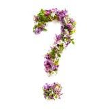 Signo de interrogación de las flores y de las lilas naturales del prado en vagos blancos imagen de archivo libre de regalías
