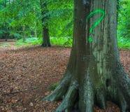 Signo de interrogación en un árbol en el bosque foto de archivo