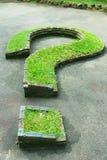 Signo de interrogación natural de la hierba Fotos de archivo