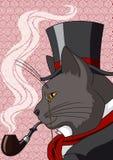 Signor Cat Immagini Stock