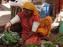 Signora al cammello giusto, Jaisalmer, India Fotografia Stock Libera da Diritti