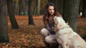 Signora attraente con il suo cane di labrador fotografia stock libera da diritti