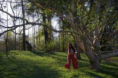 Signora che balla in un terreno boscoso nella sera fotografia stock