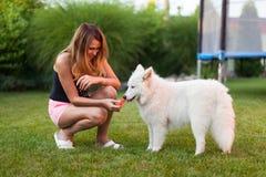Signora che gioca con il suo cane Immagini Stock Libere da Diritti