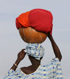 Signora con i calabas Fotografia Stock