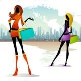 Signora con il sacchetto di acquisto Fotografie Stock