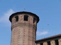 Signora del palazzo a Torino in Italia immagine stock