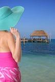 Signora della spiaggia Fotografie Stock Libere da Diritti