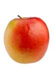 Signora dentellare Apple Fotografie Stock Libere da Diritti