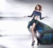 Signora di bellezza in vestito splendido Immagini Stock Libere da Diritti