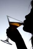 Signora Drinking Wine Fotografie Stock