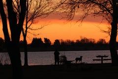Signora e la sua pesca del cane nel primo mattino fotografie stock libere da diritti