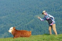 Signora e vitello Fotografie Stock
